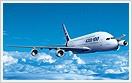 Plane Insurance
